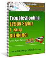 Troubleshooting Epson Stylus Blinking