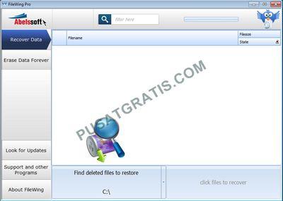 FileWing Pro akan aktif secara otomatis
