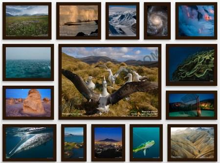 Berikut ini adalah beberapa hasil kolase foto yang dibuat dengan software CollageIt Pro