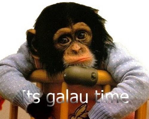 Its' Galau Time!