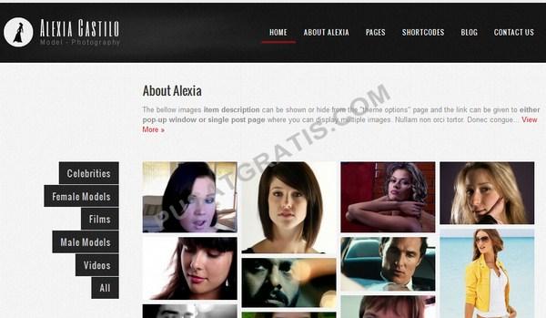 Dapatkan Alexia Castillo: Theme WordPress Premium untuk Portofolio