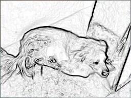 Gambar Sketsa yang dibuat dengan Pencil Sketch