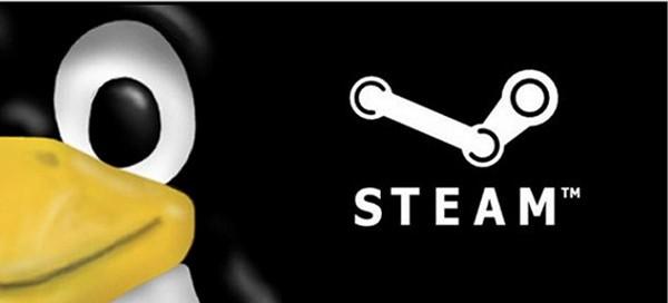 Linux Gamer..Daftar Valve Linux Steam Client Beta Yuk!