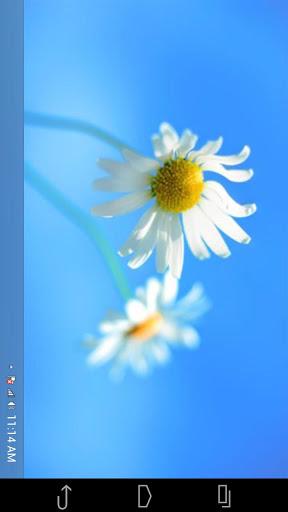 Dapatkan Tampilan Windows 8 untuk Android Kamu Menggunakan Fake Windows 8