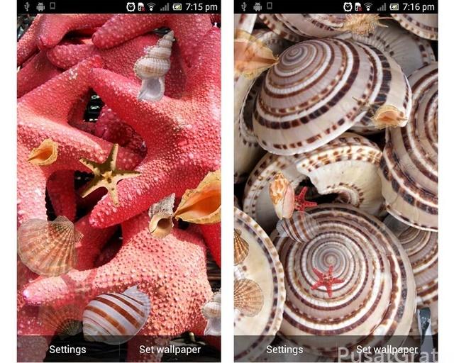 Aplikasi Gratis Wallpaper Bergerak di Android