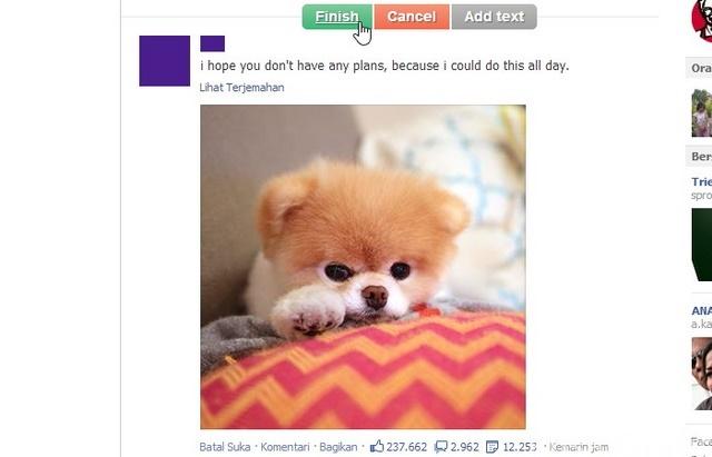 Cara Mudah Share Status Facebook dengan Status Snapper